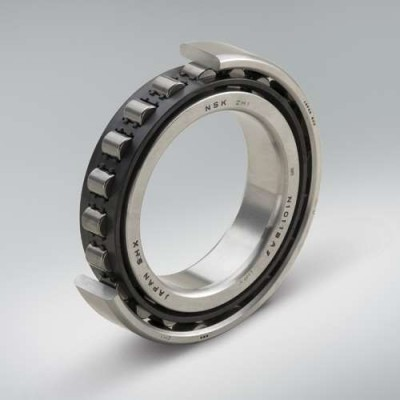 Robustride bearings